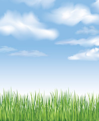 Blue sky with clouds and grass. Vector spring background. Countryside meadow landscape