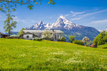 Wall Mural - Alpine scenery with traditional farm house and meadows in summer