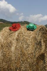 Cappelli sul pagliaio