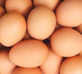 background of fresh eggs