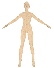 Nude girl polygonal