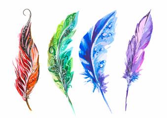 Watercolor colorful feathers set on white background. Birds feathers for boho style and decoration.