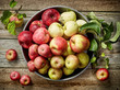 plate of various fresh apples