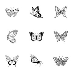 Butterfly vector set.