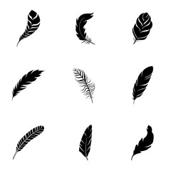 Feather vector set.