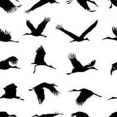 Seamless pattern - stork solhouettes