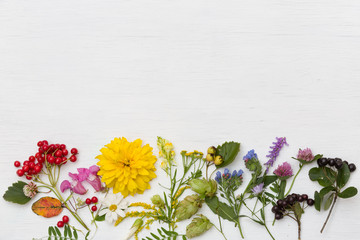Top view on rainbow of different summer flowers and berries on white wooden background.