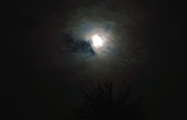 moon and cloudy on sky in the night