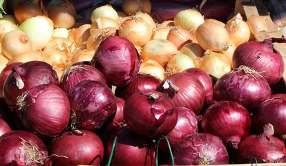 Oignons rouges et jaunes au marché