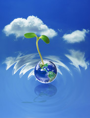 New life concept, sprout on earth with blue sky background, elements of this image furnished by NASA