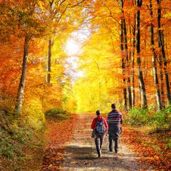 Wandern in der Natur im Herbst