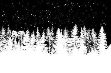 white winter coniferous forest isolated on black