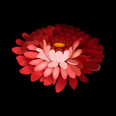 Flower element on black background.
