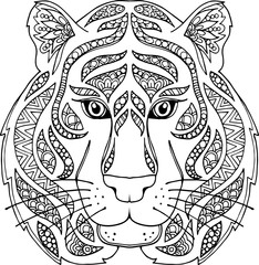 Hand drawn outline doodle tiger illustration