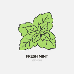 Modern vector flat icon of mint leaves. Fresh food logo. Flat symbol for peppermint gum. Freshness design element for site, mint emblem. Organic products business logotype, mint leaf illustration.