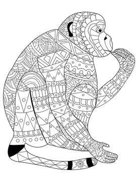 Monkey coloring vector for adults
