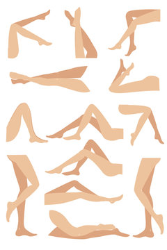 Woman legs in different poses set. Elegant lying, standing, and sitting legs positions.