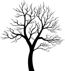 Tree silhouette on white background - detailed vector illustration