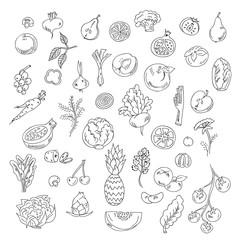 Set doodles elements vegetables and fruits. Vegeyarian food
