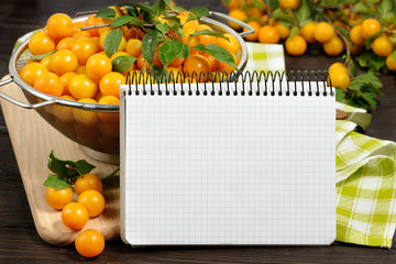 studio photography of open blank ring bound notebook surrounded by a fresh fruits plums and pencil on dark wooden table