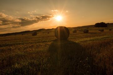 Fotoväggar - Landschaft im Sommer, Abendhimmel, Sonnenuntergang