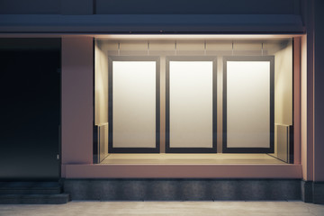 Storefront with blank posters at night