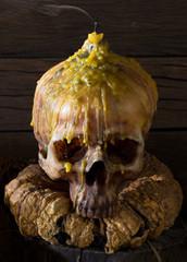 Old Skull on molder pumpkin and dry fruits