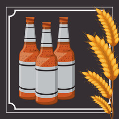 bottle beer drink wheat ear beverage traditional wheat icon. Colorful frame and Flat design. Vector illustration