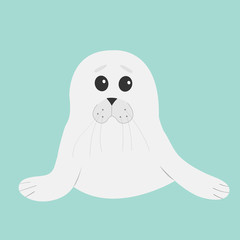 White seal pup baby harp. Cute cartoon character. Blue background. Flat design