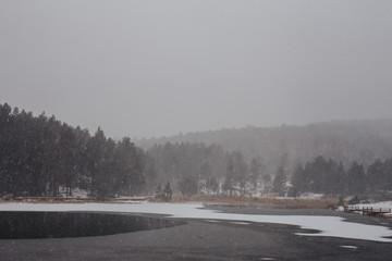 Snowfalling at forest lake