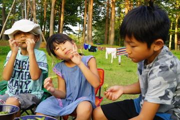 枝豆を食べる三兄弟 子どもたち キャンプ アウトドア バーベキュー 夏休み