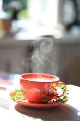 Steaming Hot tea cup with thyme isolated on window background