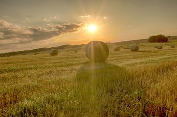Fotoväggar - Landschaft im Sommer, Feld mit Strohballen, Abendsonne
