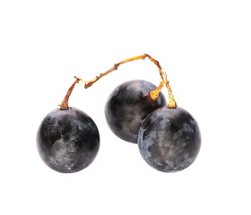 Black grape isolated on white background