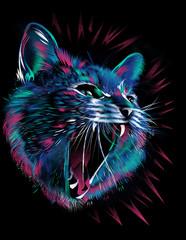 Hissing blue cat head