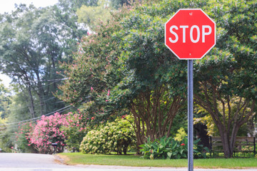 Red stop sign with green background.