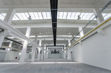 Large bright space in a business incubator