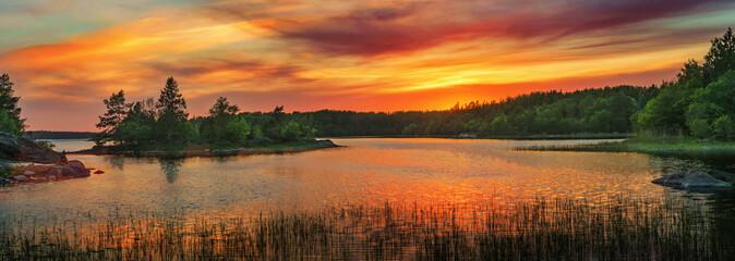 Vivid golden sunset in the archipelago of Scandinavia. Evergreen