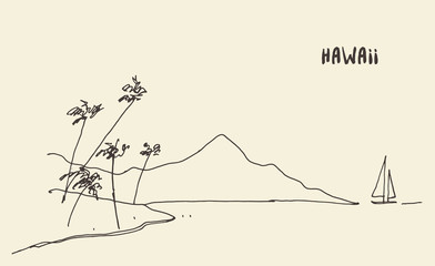 Sketch Hawaiian seaside view vector hand drawn.