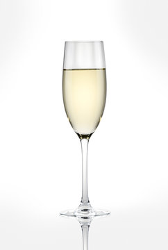 a glass of white wine on a white background.