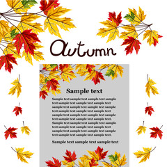Banner of autumn leaves vector illustration. Background with hand drawn autumn leaves. Design elements. Autumn leaves fall on banner.