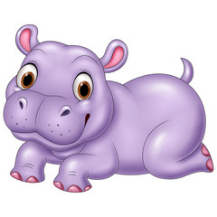 Cute baby hippo isolated on white background