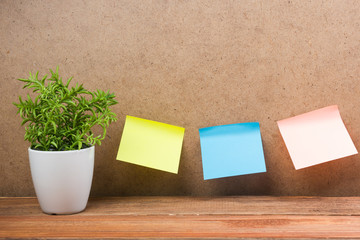 Office notes on board, copy space for ad text, plant flower, wooden grunge vintage table desk background.