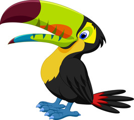 Funny toucan
