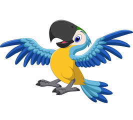 Happy parrot flying