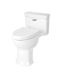 sanitary toilet bowl