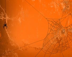 spider web halloween background