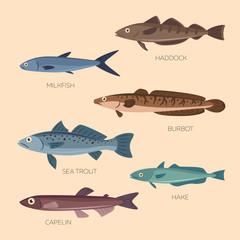 Cute cartoon flat fishes