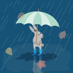 Card Bunny in rubber boots in the rain with umbrella, autumn pic