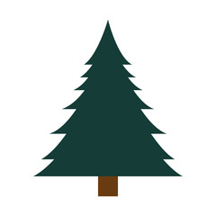 pine tall tree plant traditional christmas decorative symbol vector illustration